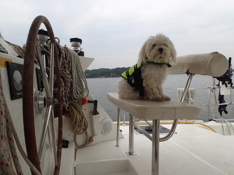 Cap'n Charlie standing watch