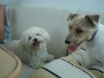 Charlie & Zoe