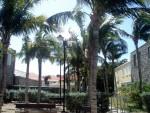 St Barth's & Antigua